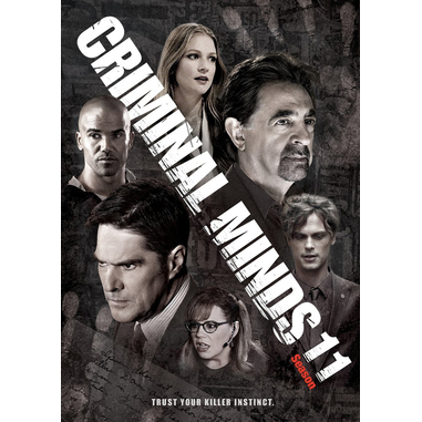 Criminal Minds, stagione 11 (DVD)