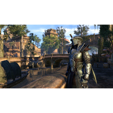 Bethesda The Elder Scrolls Online: Morrowind, PS4 Basic PlayStation 4 Inglese videogioco