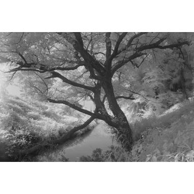 Kenko PRO1D R72 Infrared camera filter 77mm