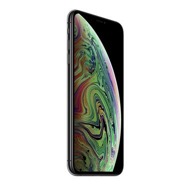 """Apple iPhone XS Max 16,5 cm (6.5"""") 64 GB Doppia SIM 4G Grigio"""