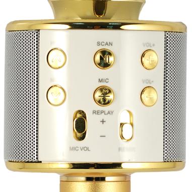 Xtreme Hollywood Karaoke microphone Con cavo e senza cavo Oro, Argento